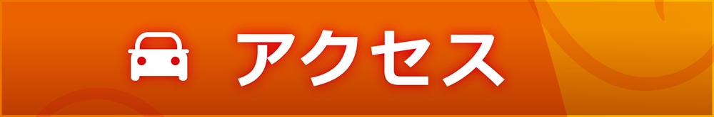 入場/アクセス
